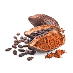 Qué es el Cacao y para qué sirve: Todas sus propiedades, contraindicaciones y efectos secundarios