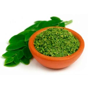 Qué es la Moringa y para qué sirve: Todas sus propiedades, contraindicaciones y efectos secundarios