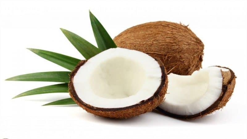 aceite de coco sirve como coadyuvante en el tratamiento contra el cáncer