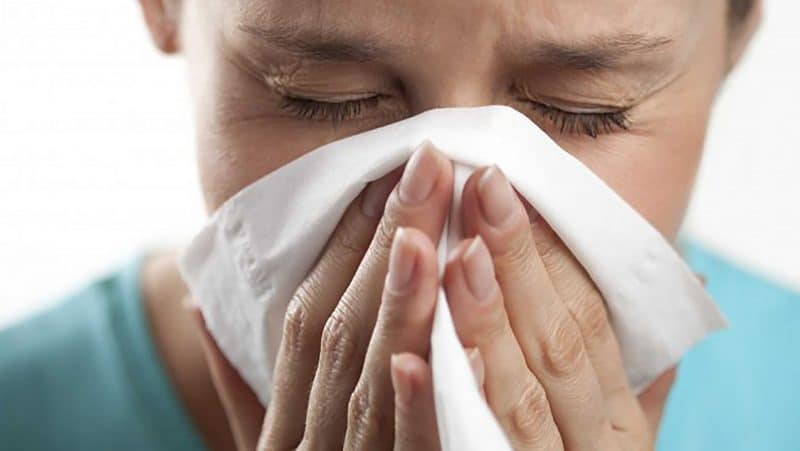 bayas de goji ideal para tratar las enfermedades respiratorias