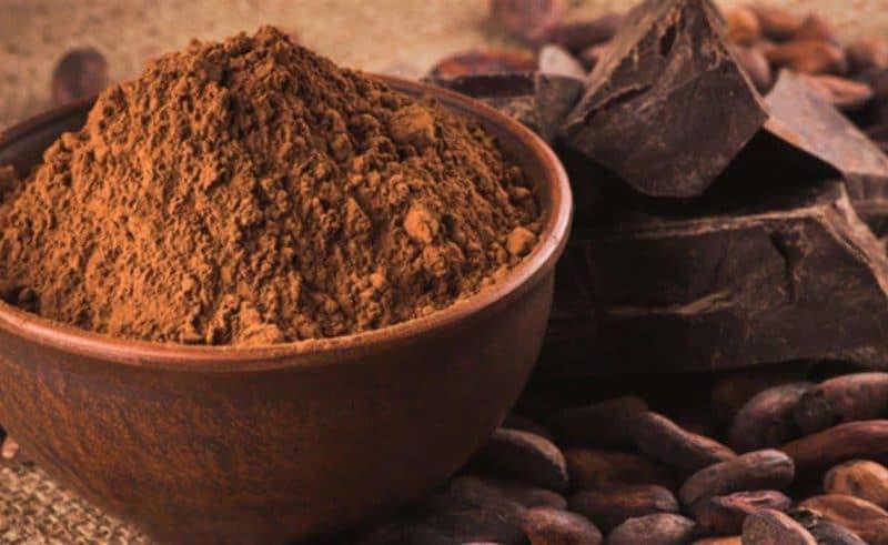 cacao y sistema nervioso