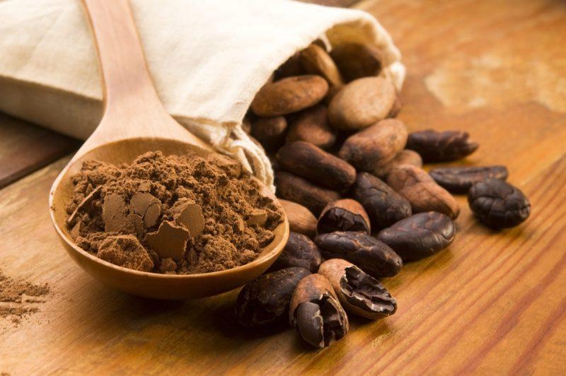 cantidad de antioxidantes en el cacao