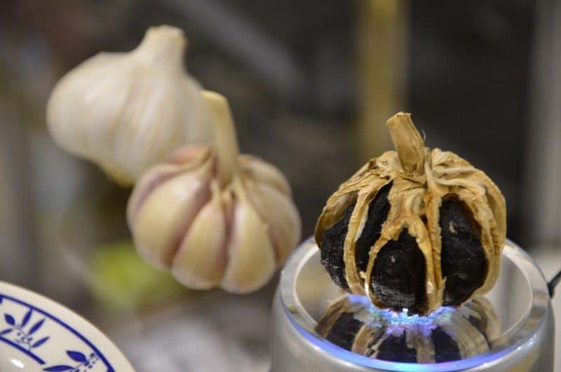 diferencias entre el ajo negro y el ajo común
