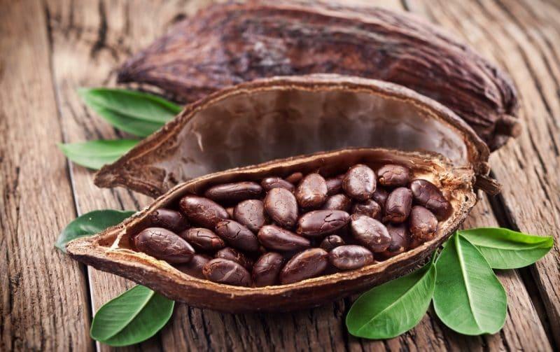 información nutricional del cacao