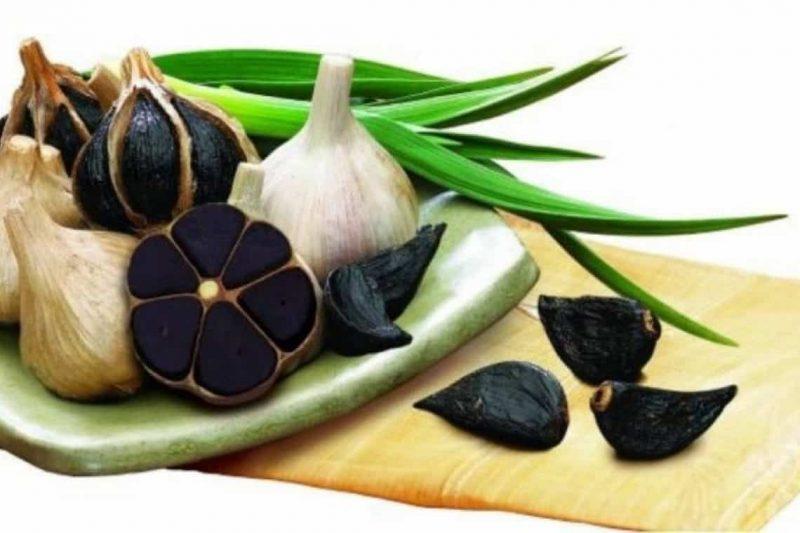 origen del ajo negro