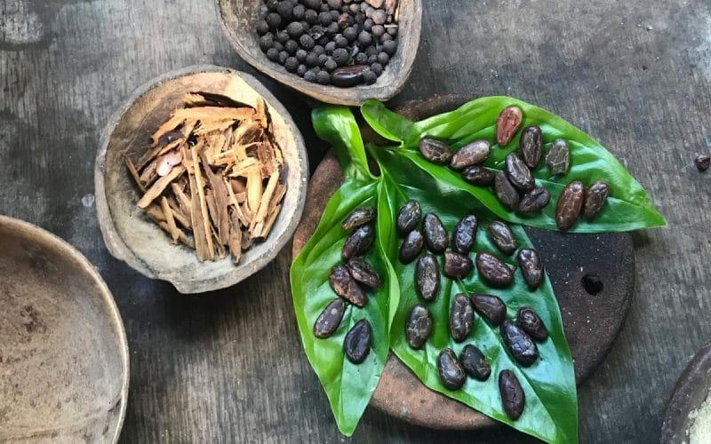 usos medicinales del cacao