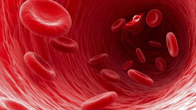 beneficios de la chlorella orgánica para reducir los niveles de azúcar en sangre