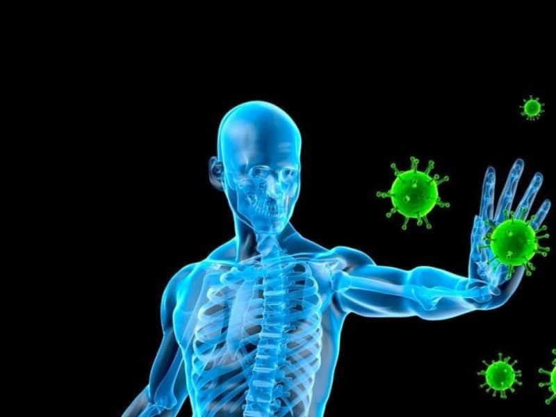beneficios del camu camu para el sistema inmunológico