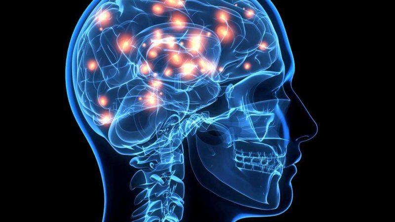 camu camu para el cerebro