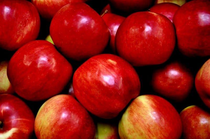 camu camu propiedades antioxidantes