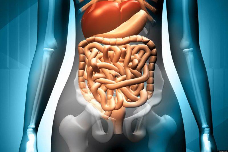 como preparar la chia para la gastritis
