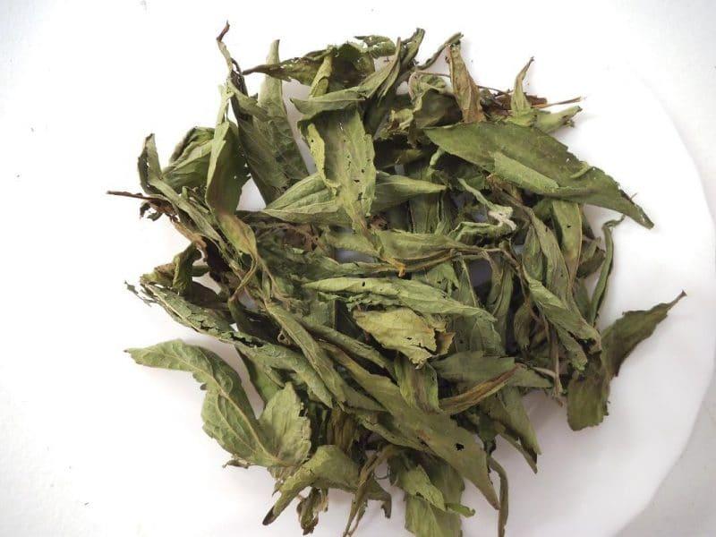 como usar las hojas de stevia