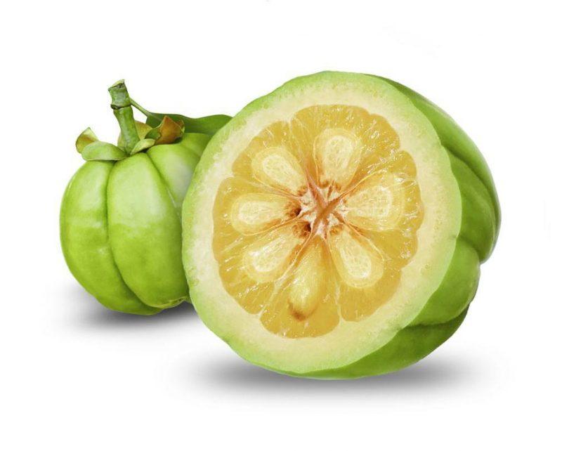 garcinia cambogia nutrientes