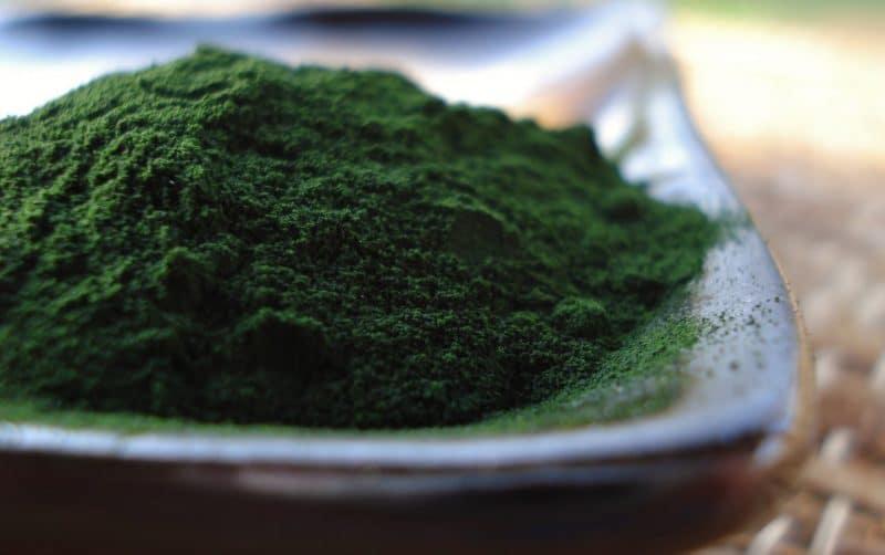 nutrientes de la chlorella