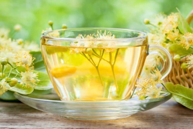para qué sirve el té de moringa con limón