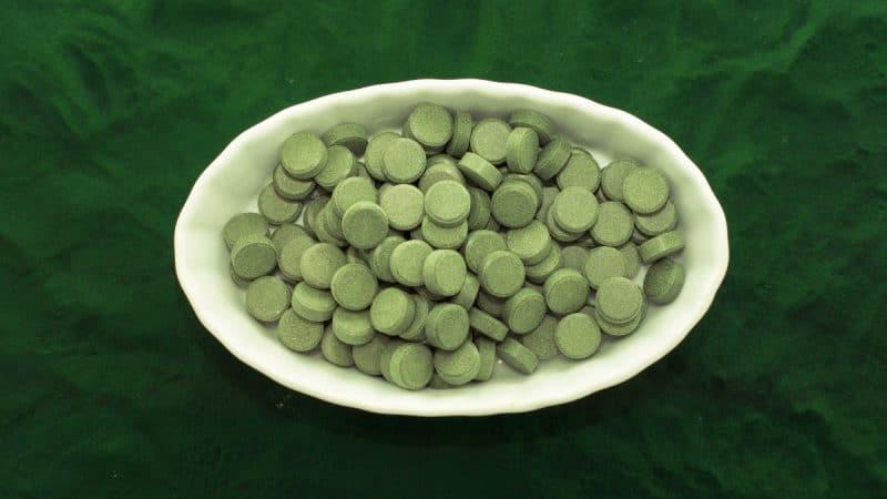 propiedad digestiva y restauradora intestinal de la chlorella