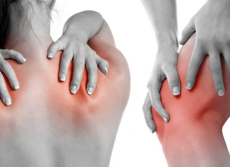 propiedades de la equinácea para la artritis