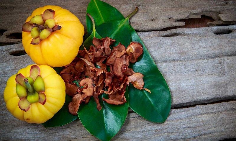 propiedades digestivas garcinia cambogia
