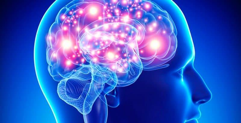 quinoa para el sistema neurológico