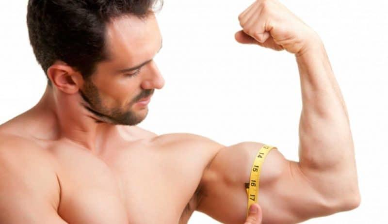 semillas de chía para aumentar masa muscular