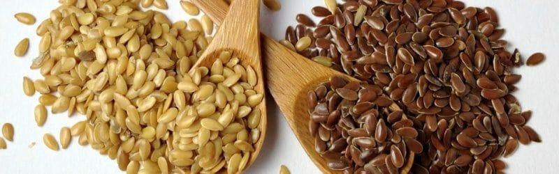 tipos de semillas de lino o linaza